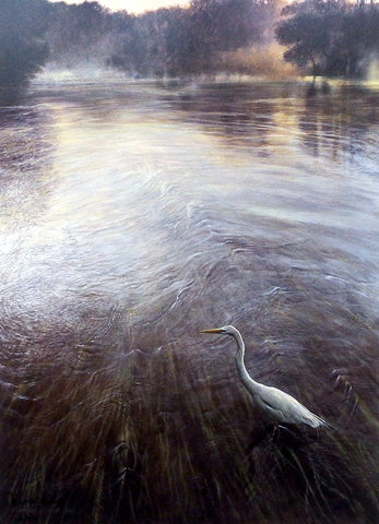 Matthew Hillier River Of Grass