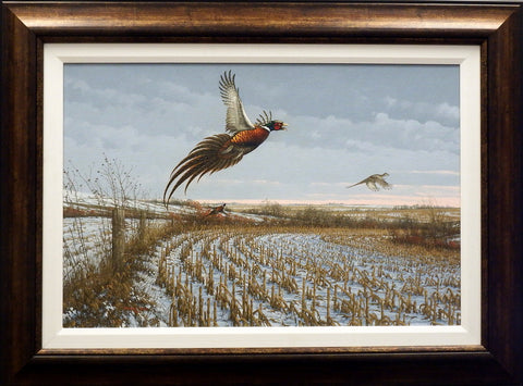 Michael Sieve Late Season Pheasants- Original