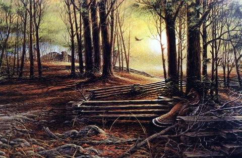 Terry Redlin Soft Shadows