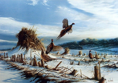 Terry Redlin Pheasant print STARTLED