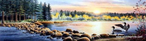 Jerry Raedeke Stepping Stones- Mississippi Headwaters Itasca