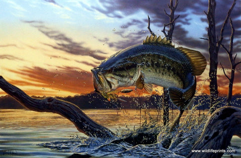 Al Agnew Largemouth Bass Print Strike King