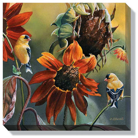 Susan Bourdet Sunseekers- Goldfinches