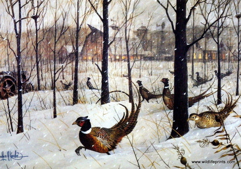 Les Kouba Print The Blizzard--Ring-Necked Pheasants