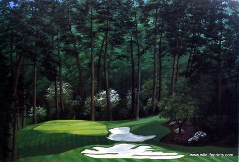 Elizabeth Peper The Dream Course Hole Ten Augusta