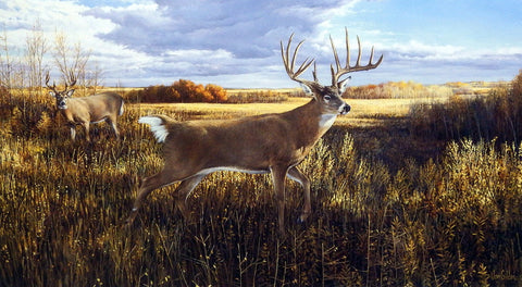 Ron Van Gilder The Hanson Buck