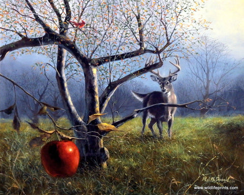 R.J. McDonald The Last Apple