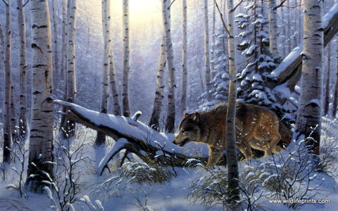 Derk Hansen Winter Wolf Art Print