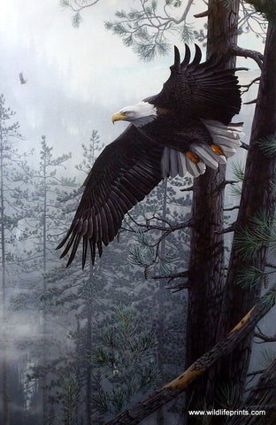 Bruce Grayson Mountain and Eagle Print Through the Clearing