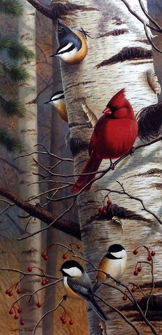 Cynthie Fisher Bird Cardinal Picture UNANNOUNCED VISITORS II