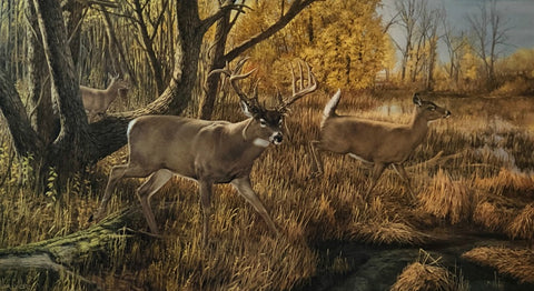 Ron Van Guilder Old Mossy Horn S/N Deer Buck Art Print