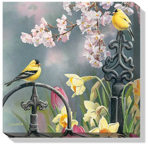 Susan Bourdet Victorian Seasons- Spring Goldfinches