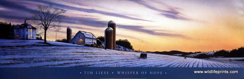 Tim Liess Whisper of Hope