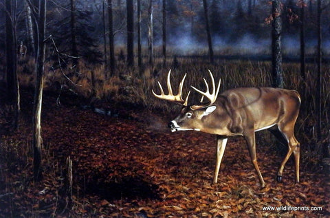 Brian Kuether whitetail deer art print checking scrape WHO'S BEEN HERE