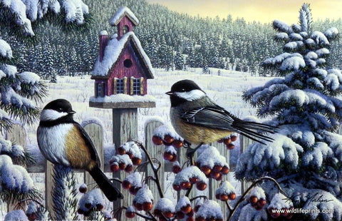 Kim Norlien Winter Chickadees