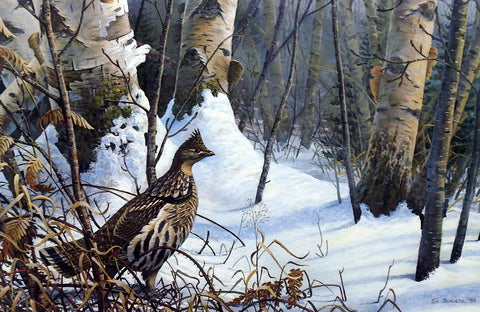 Tim Schultz Winter Morning Ruffed Grouse