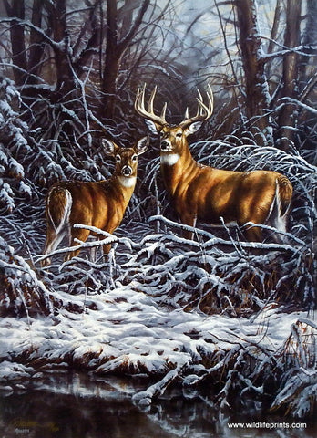 Rosemary Millette Woodland Monarch- Whitetail Deer