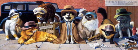 Bryan Moon Humorous Cat picture dressed as gangsters