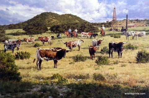 Bradley Schmehl painting Texas longhorn cattle and oil derricks
