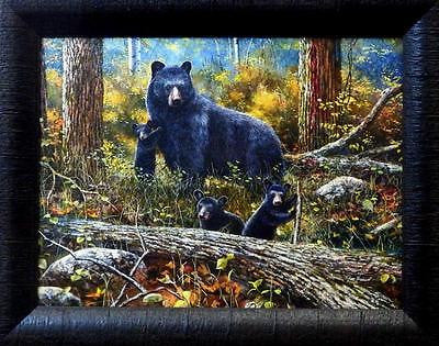 "Jim Hansel ""Age of Wonder"" Bear Cub Studio Canvas Framed Print- 19"" x 15"""