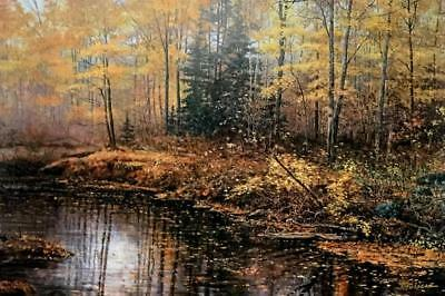 Scott Zoellick Autumn Mist S/N Fall Colors Print 30 x 20 with Certificate