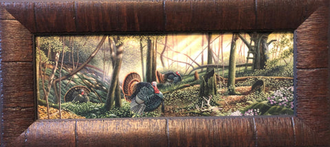 """Trophy Country"" Wild Turkey Art Print By Mike Flentje Framed 17 "" x 8"