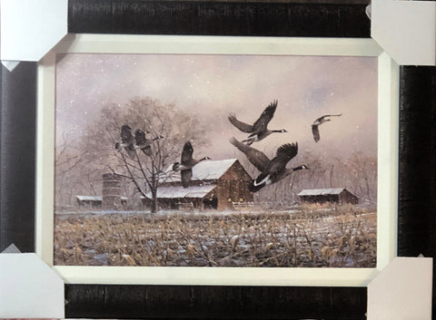 James Killen Goose Music Canadian Honker Canvas Art Print-Framed