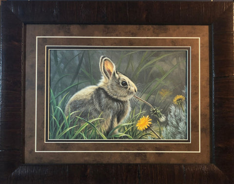 Paul Krapf Spring Cottontail Rabbit Art Print-Framed 19 x 15