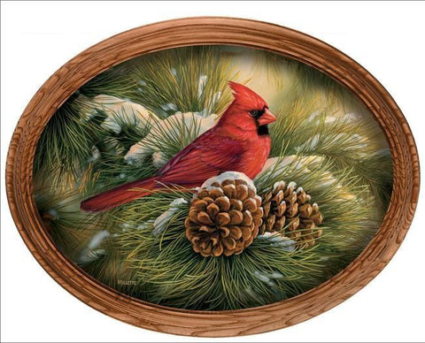 Rosemary Millette December Dawn - Cardinal Canvas Oval