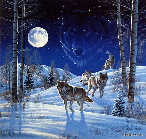 Cynthie Fisher timber wolf picture MOONLIGHT GUARDIANS