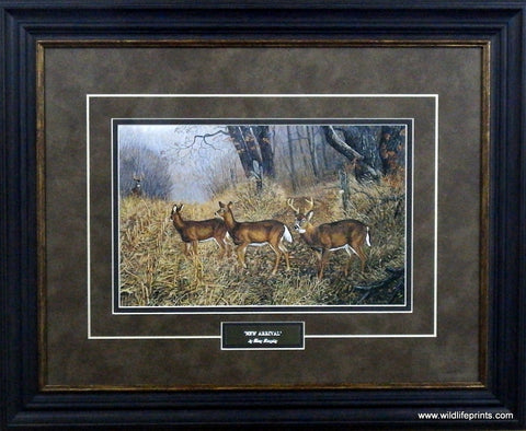 Terry Doughty New Arrival- Framed