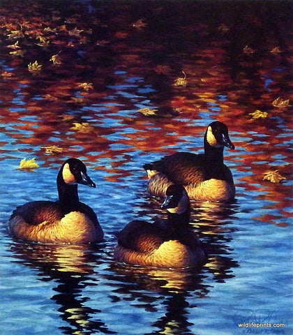 Robert Copple Reflections of an October Afternoon