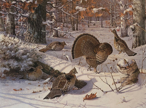 Owen Gromme Winter Ruffed Grouse S/N Art Print