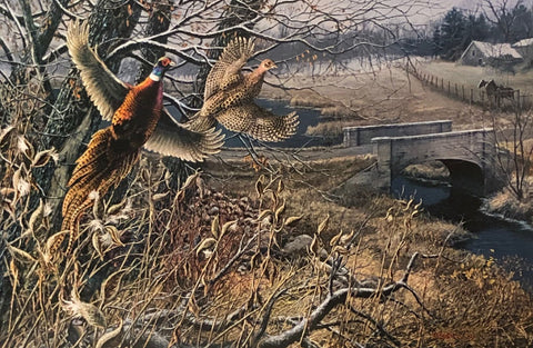 James Meger The Past is Present Farm S/N Pheasant Art Print 24 x 16