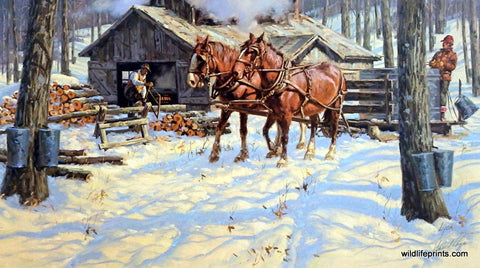 Harold Lyon The Sugar Shack