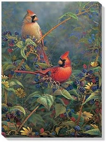 Sam Timm Berry Bush Cardinals Wrapped Canvas