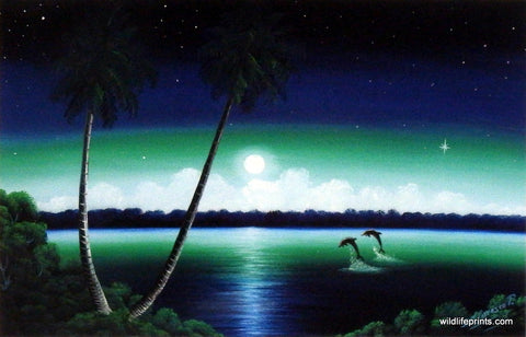 Jose Paulino Tropical Nights