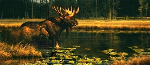 Nancy Glazier Waterworld Bull Moose Art Print-Signed