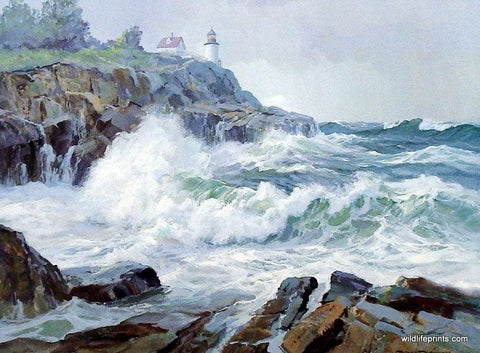 Picture of Acadia National Park Lighthouse by Charles Vickery