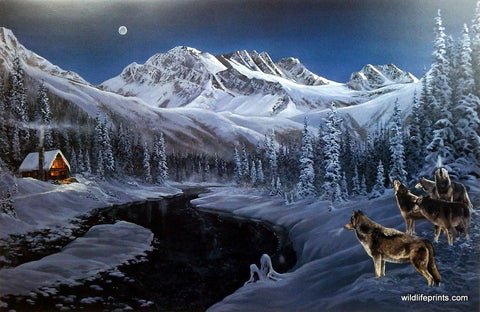 Andrew Kiss Wildlife Wolf Print WINTER GLOW
