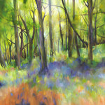 Woodlands and Sunbeams Limited Edition Giclée Print
