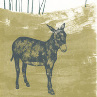 Donkey Limited Edition Screenprint