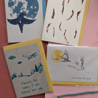 Card Pack-birds and songs