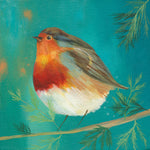 Robin on Turquoise Greetings Card