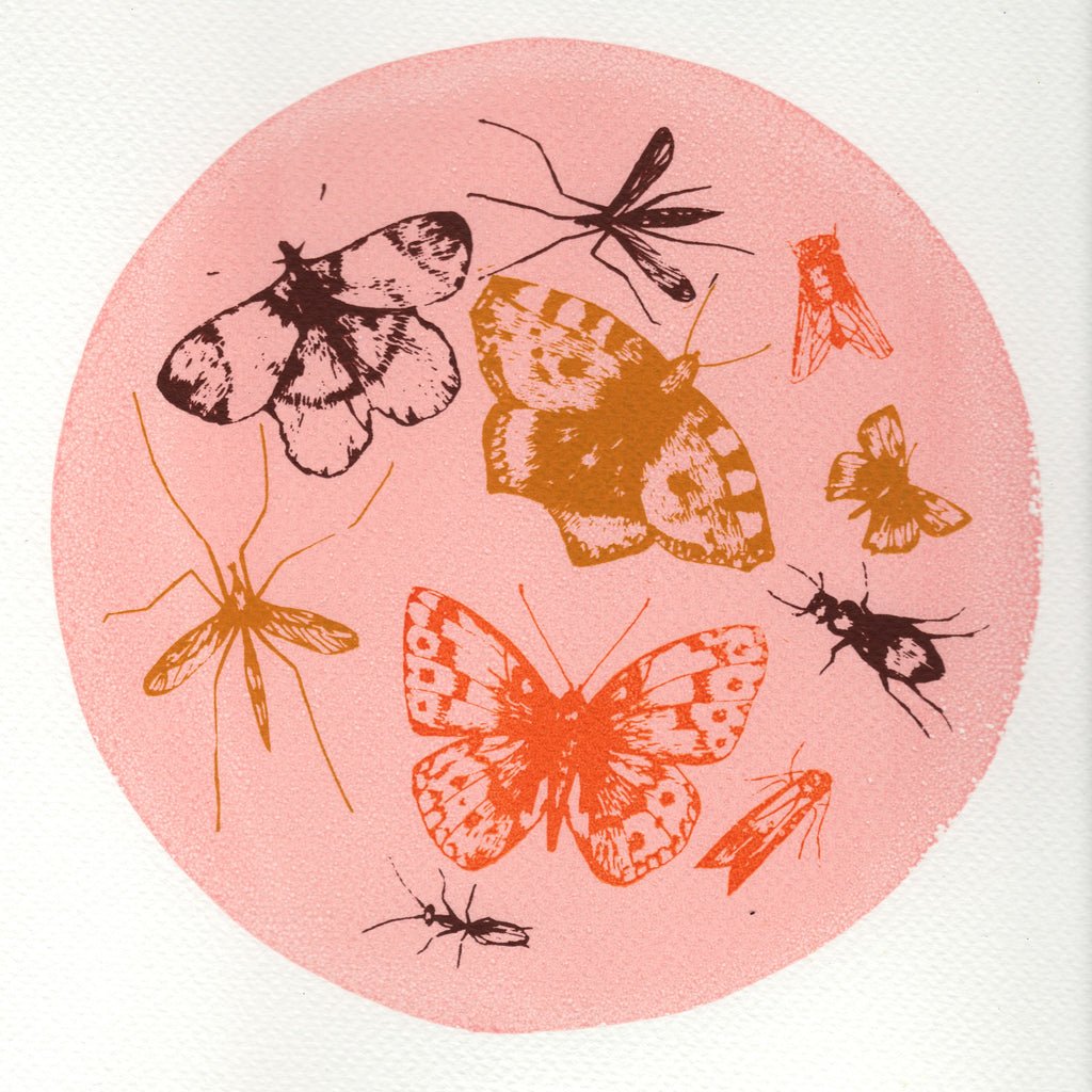 Butterflies & Bugs Screen Print