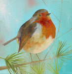 Robin on Pale Blue  Ltd Edition Giclée Print