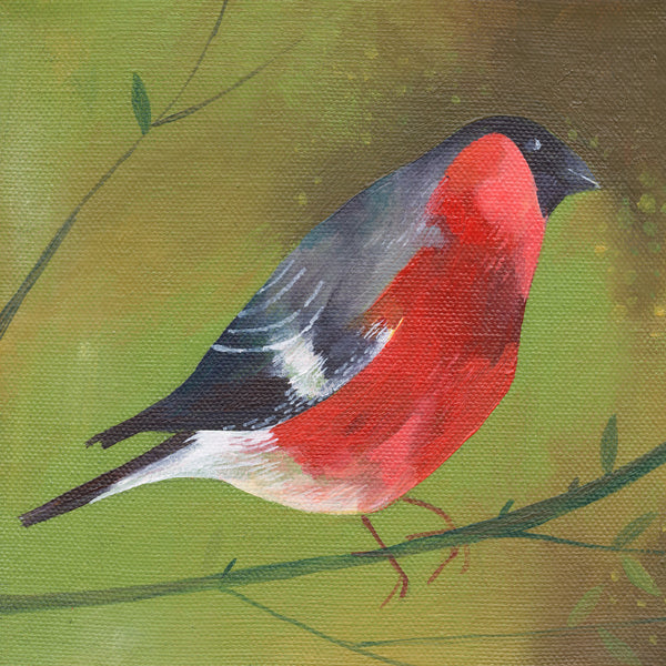 Bullfinch on Green giclée print