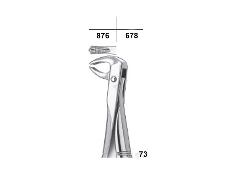 Waldent Tooth Extraction Forceps Lower Molars/Mandibulars, No.73 (1/110)