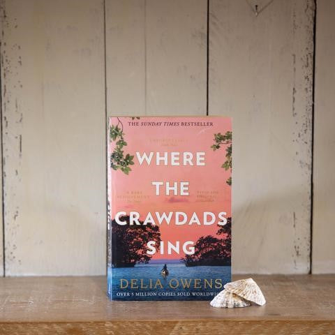 Where the Crawdads Sing: a review