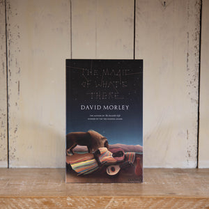 The Magic of What's There by David Morley